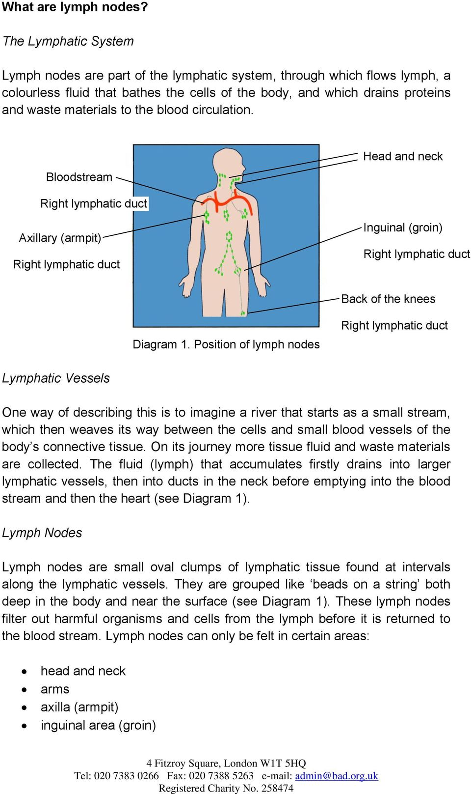 How To Check Your Lymph Nodes Pdf Related Pictures Full Body Diagram Showing The Lymphatic Blood Circulation Bloodstream Head And Neck Axillary Armpit Inguinal Groin 3 Back Of Knees Usually
