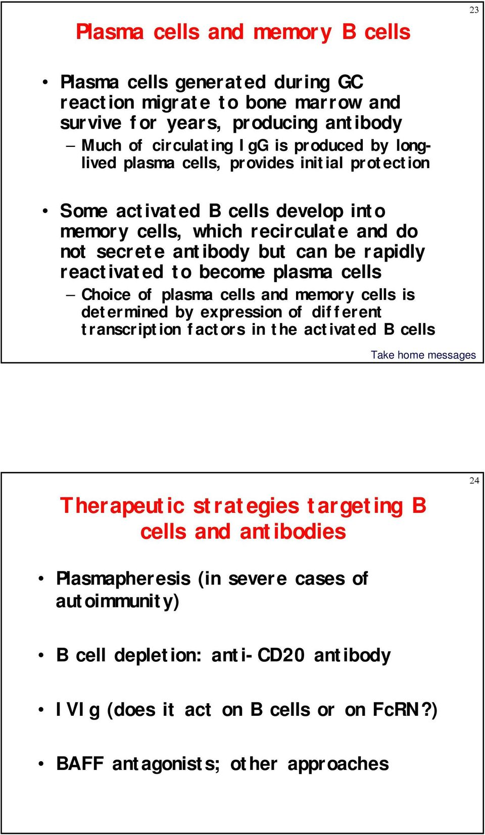 become plasma cells Choice of plasma cells and memory cells is determined by expression of different transcription factors in the activated B cells Therapeutic strategies targeting