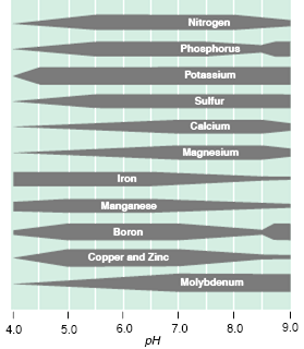 ph affects soil nutrient availability Most Montana soils are: 1. Generally alkaline (ph > 7.