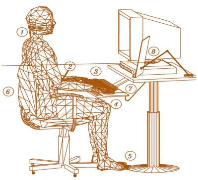 footrest, telephone, palm rest) and ambient factors (noise, lighting, temperature, etc.). 2.1 Chair It all begins with the chair as the chair may be the most important part of the workstation.