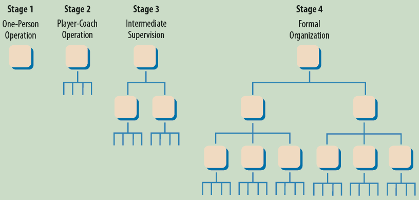 Organizational Stages