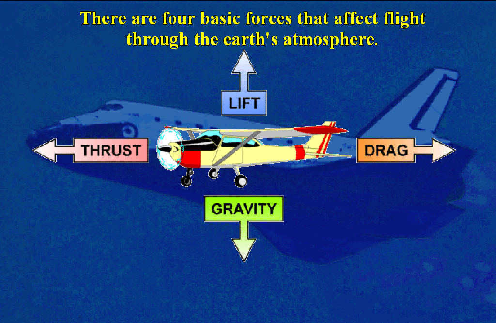 There are four basic forces that affect flight through