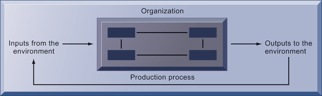 Organizations and Information Systems What is an organization?