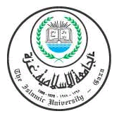 Islamic University Of Gaza Data Communication Faculty of Engineering Discussion Computer Department Chapter 9 Eng. Ahmed M.
