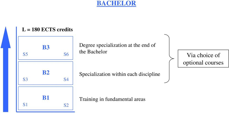 choice of optional courses S3 B2 S4