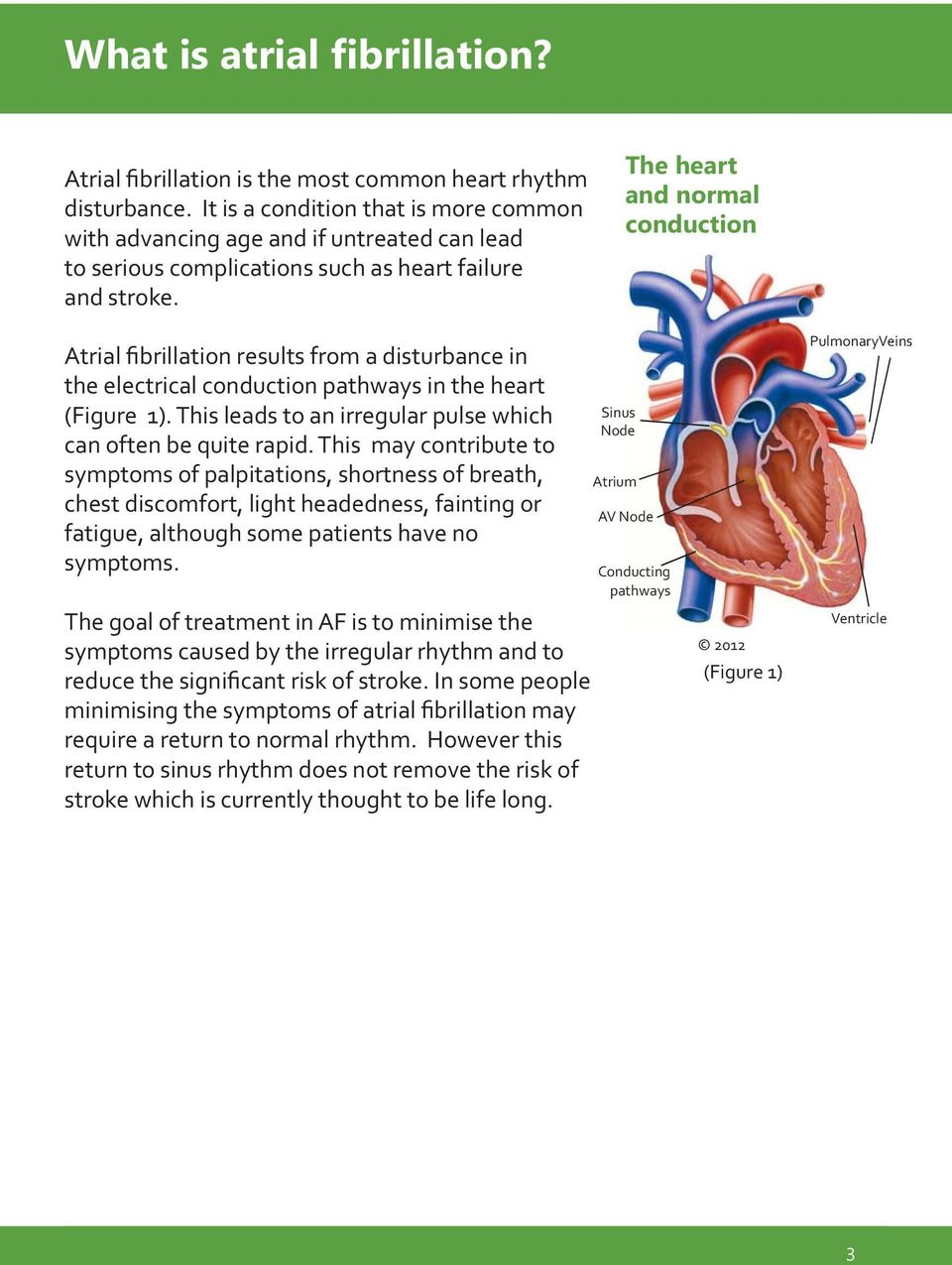 The heart and normal conduction Atrial fibrillation results from a disturbance in the electrical conduction pathways in the heart (Figure 1).