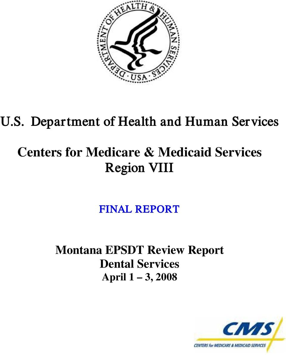 Services Region VIII FINAL REPORT Montana
