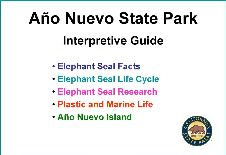 Cycle Elephant Seal Research