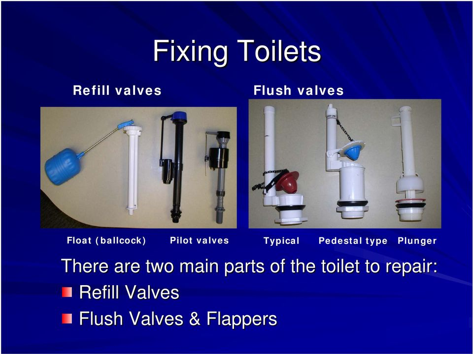 Plunger There are two main parts of the toilet