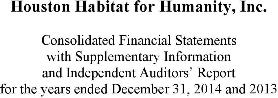 Independent Auditors Report for the