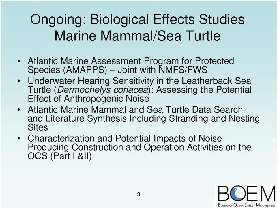 Effect of Anthropogenic Noise Atlantic Marine Mammal and Sea Turtle Data Search and Literature Synthesis Including Stranding and