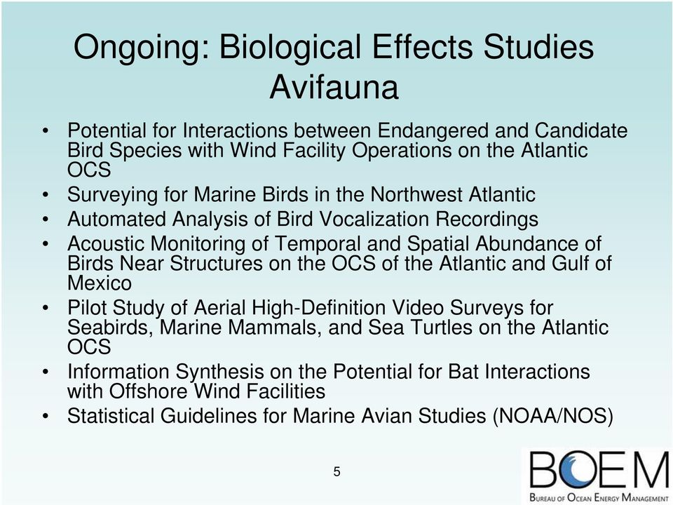 Birds Near Structures on the OCS of the Atlantic and Gulf of Mexico Pilot Study of Aerial High-Definition Video Surveys for Seabirds, Marine Mammals, and Sea Turtles