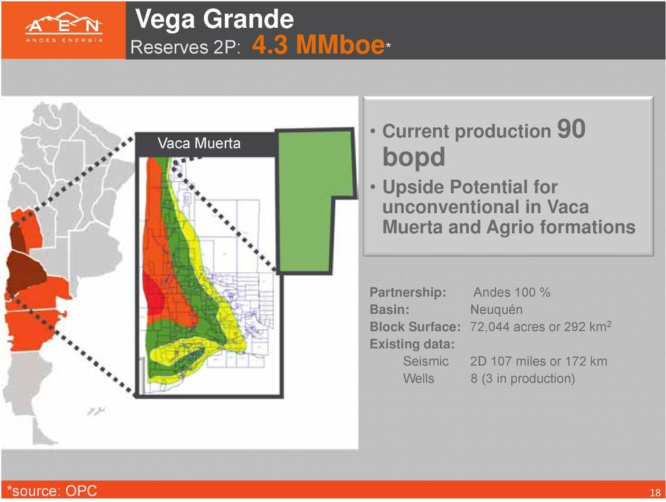 unconventional in Vaca Muerta and Agrio formations Partnership: Andes 100 %