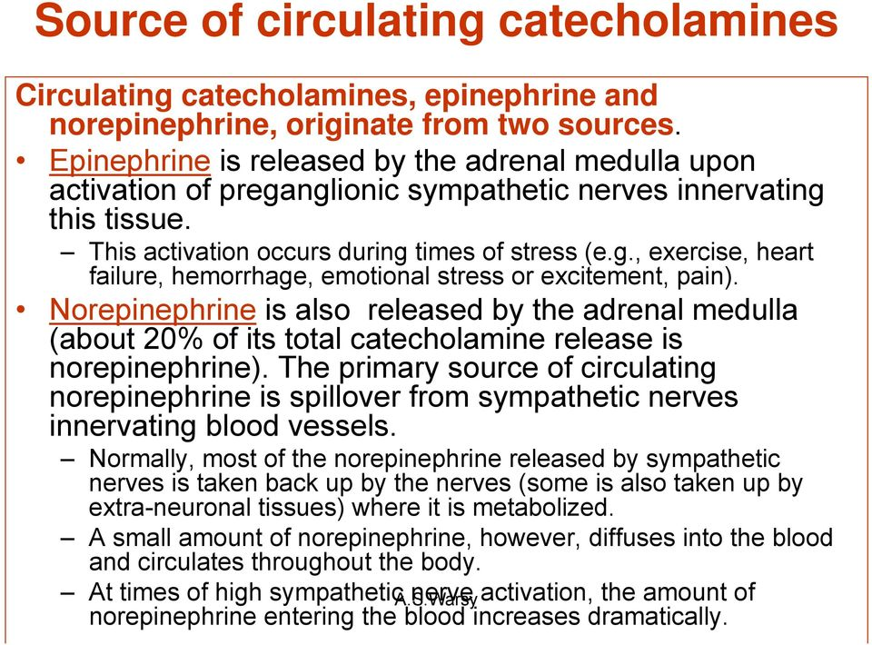 Norepinephrine is also released by the adrenal medulla (about 20% of its total catecholamine release is norepinephrine).