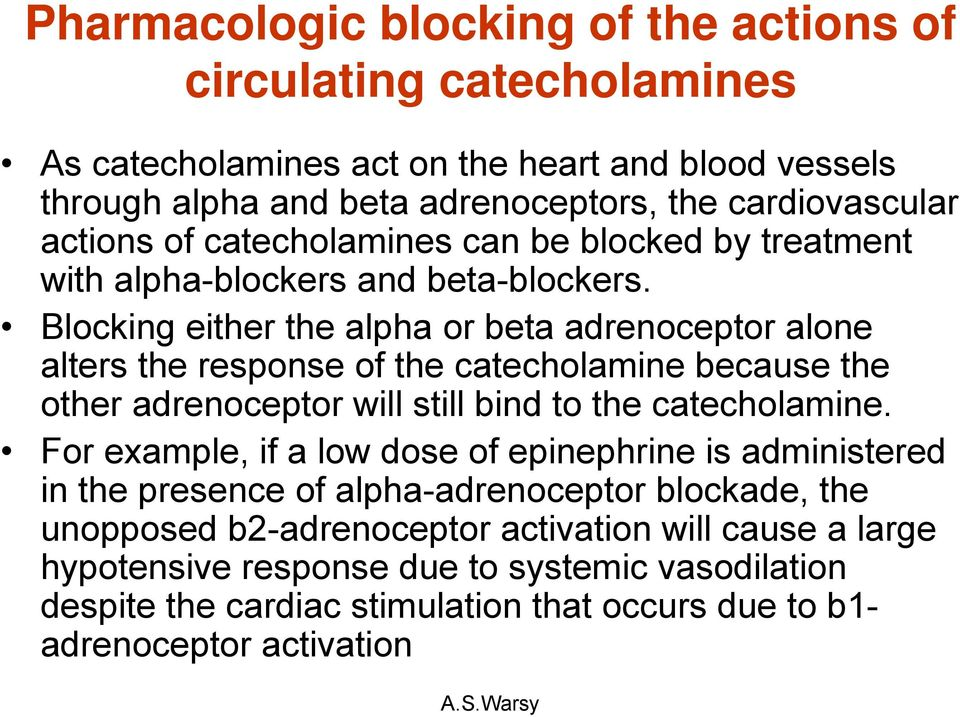 Blocking either the alpha or beta adrenoceptor alone alters the response of the catecholamine because the other adrenoceptor will still bind to the catecholamine.