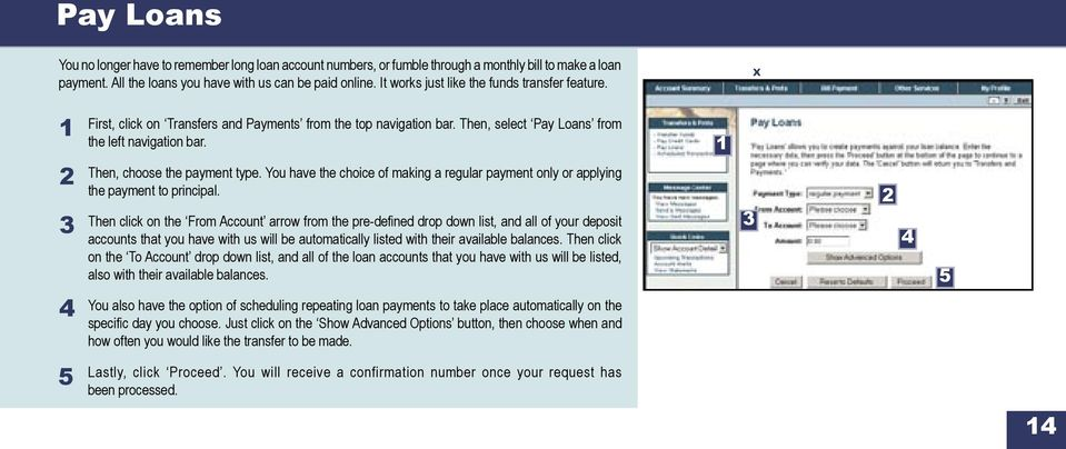You have the choice of making a regular payment only or applying the payment to principal.