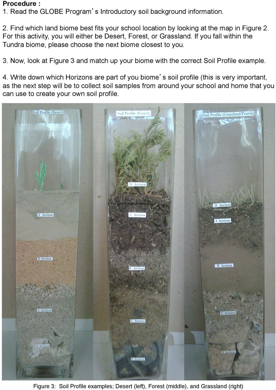 Now, look at Figure 3 and match up your biome with the correct Soil Profile example. 4.
