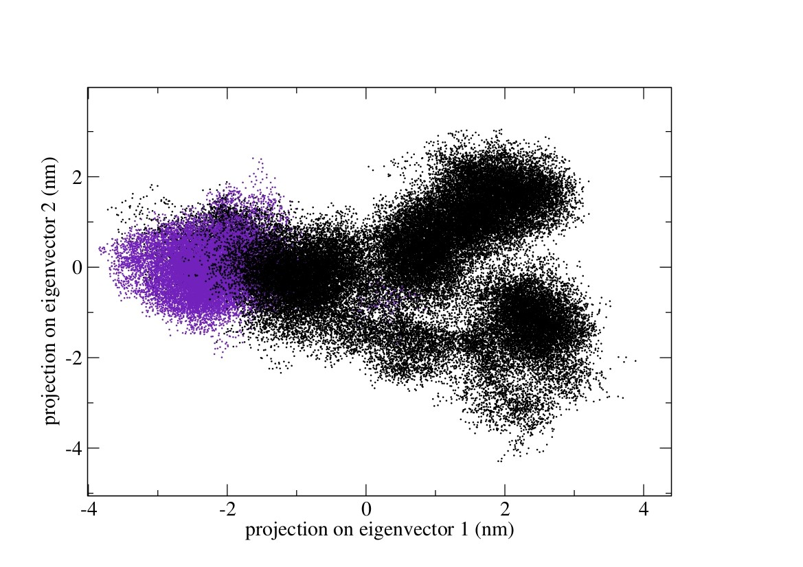Analysis of MD trajectories (Essential Dynamics of Proteins) Neva