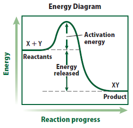 Energy of Reactions Activation energy The minimum amount of energy needed for reactants to form products is