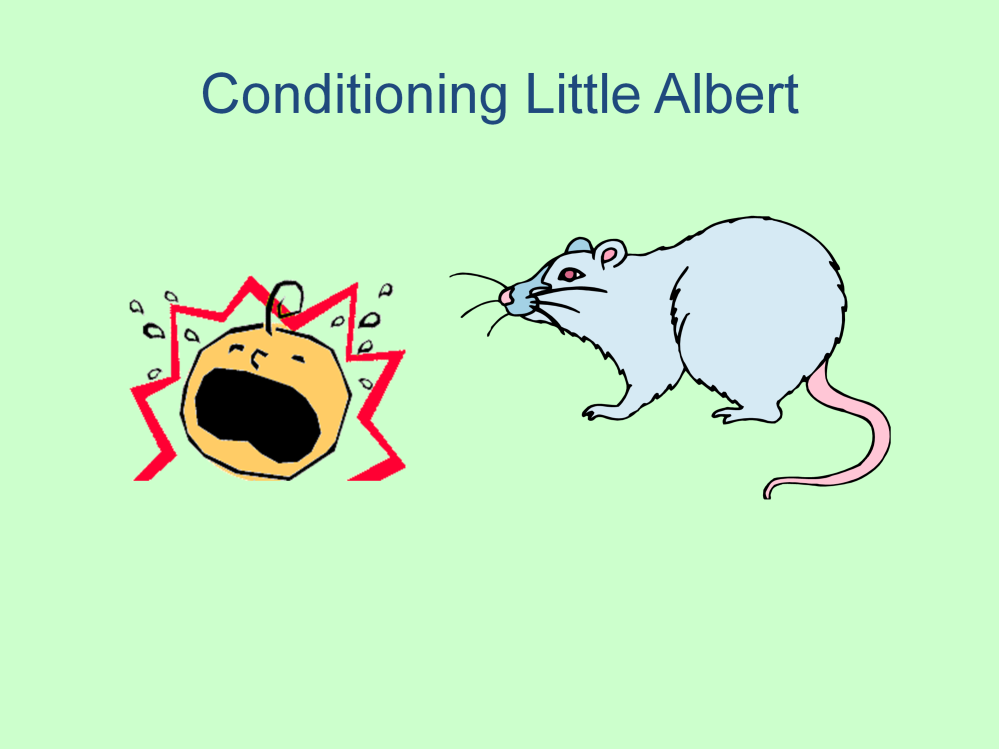 In 1919 John Watson conditioned baby Albert to fear a white rat. He made a loud, startling sound, which made Albert cry. He continued to make the sound in the presence of the rat.