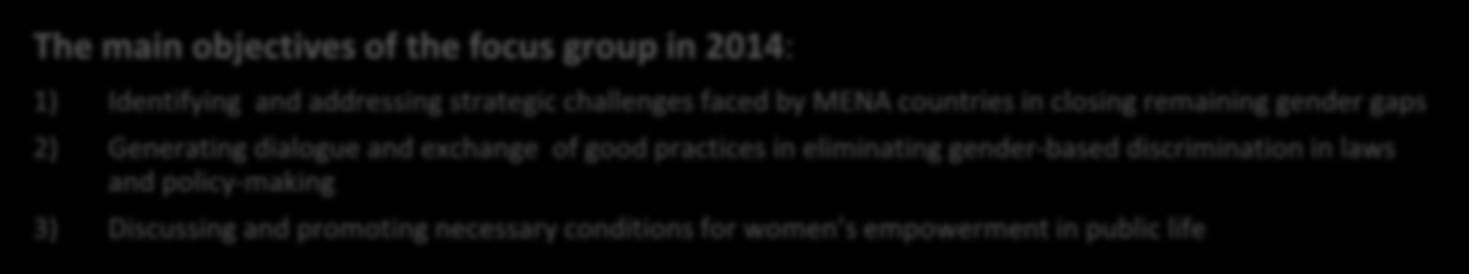 C. Gender Equality MENA-OECD Gender Focus Group Women in Government Platform The main objectives of the focus group in 2014: Participants of the seminar 1) Identifying and addressing strategic