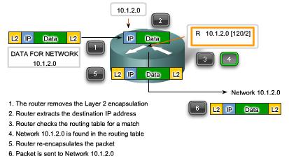 Packet Forwarding Moving toward its Destination Routing is done packet-by-packet and hop-by-hop. Each packet is treated independently in each router along the path.