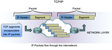 IP V4 Protocol The Network layer services implemented by the TCP/IP protocol suite are the Internet Protocol (IP). Version 4 of IP (IPv4) is currently the most widelyused version of IP.