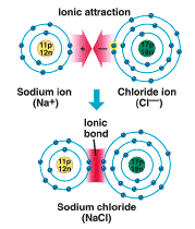 Ionic Bond * Metals have low electronegativity * Nonmetals have high EN so nonmetals are