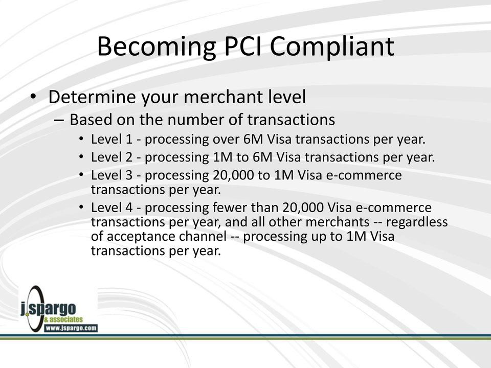 Level 3 - processing 20,000 to 1M Visa e-commerce transactions per year.