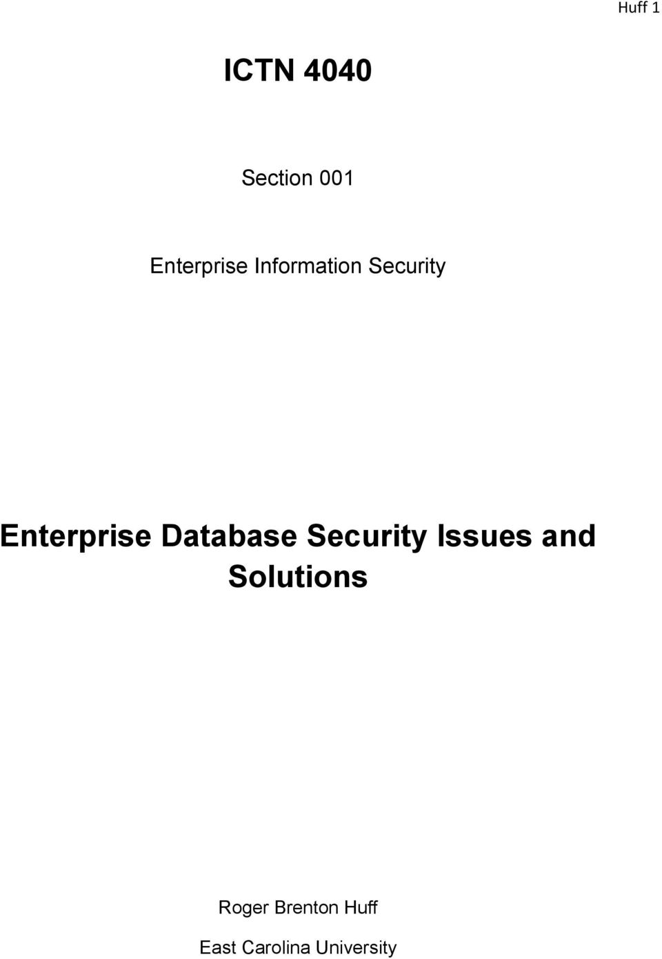Enterprise Database Security Issues