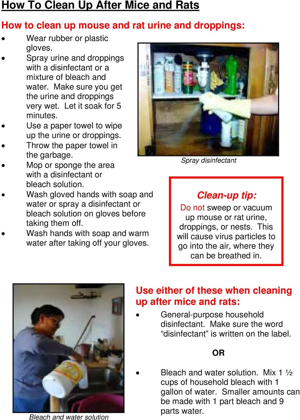Mop or sponge the area with a disinfectant or bleach solution. Wash gloved hands with soap and water or spray a disinfectant or bleach solution on gloves before taking them off.
