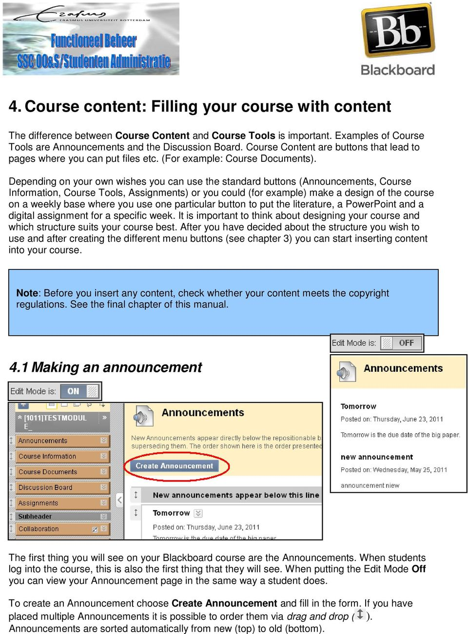 Depending on your own wishes you can use the standard buttons (Announcements, Course Information, Course Tools, Assignments) or you could (for example) make a design of the course on a weekly base