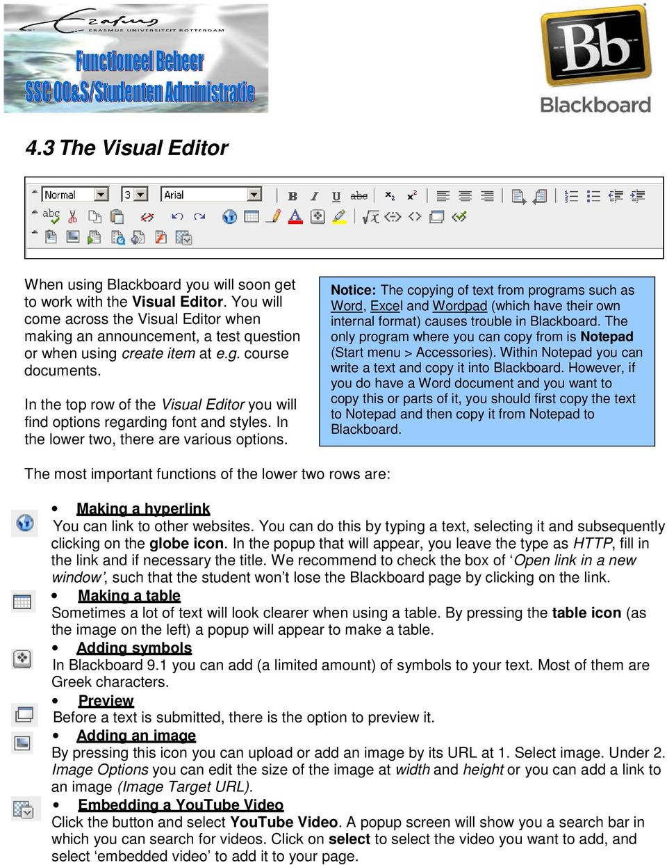 In the top row of the Visual Editor you will find options regarding font and styles. In the lower two, there are various options.