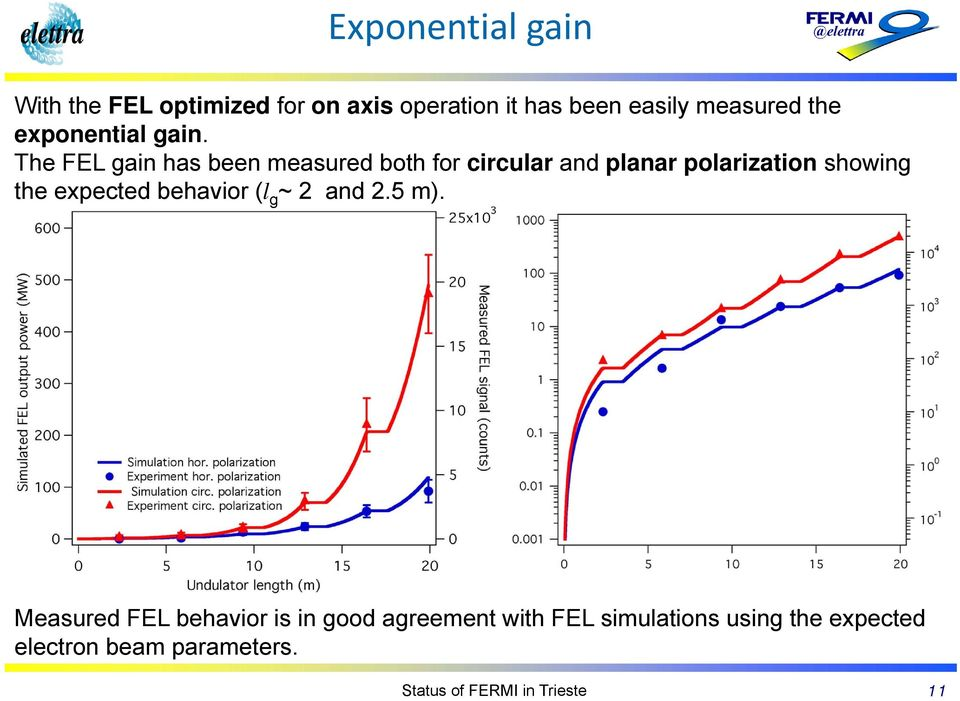 The FEL gain has been measured both for circular and planar polarization showing the expected