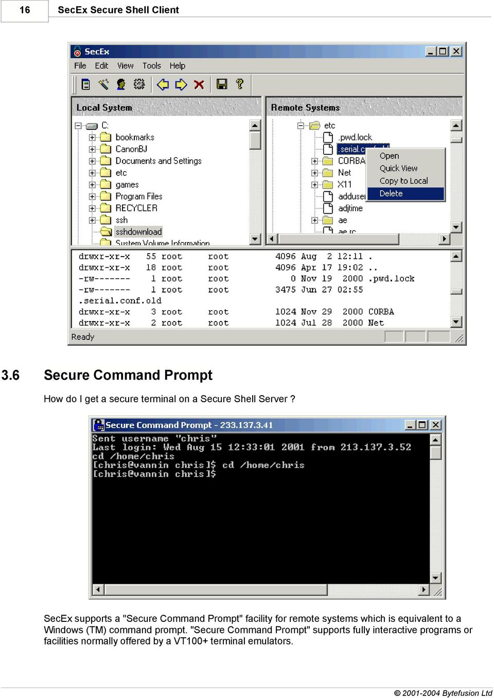 "SecEx supports a ""Secure Command Prompt"" facility for remote systems which is equivalent"