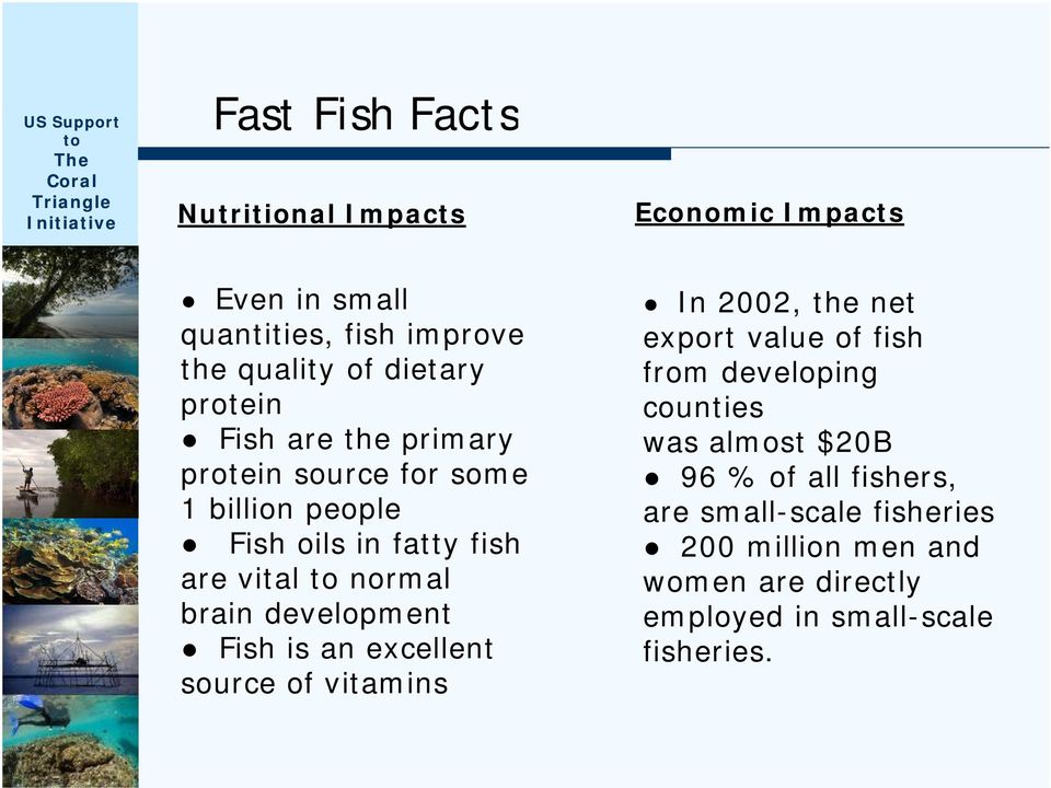 development Fish is an excellent source of vitamins i In 2002, the net export value of fish from developing counties was