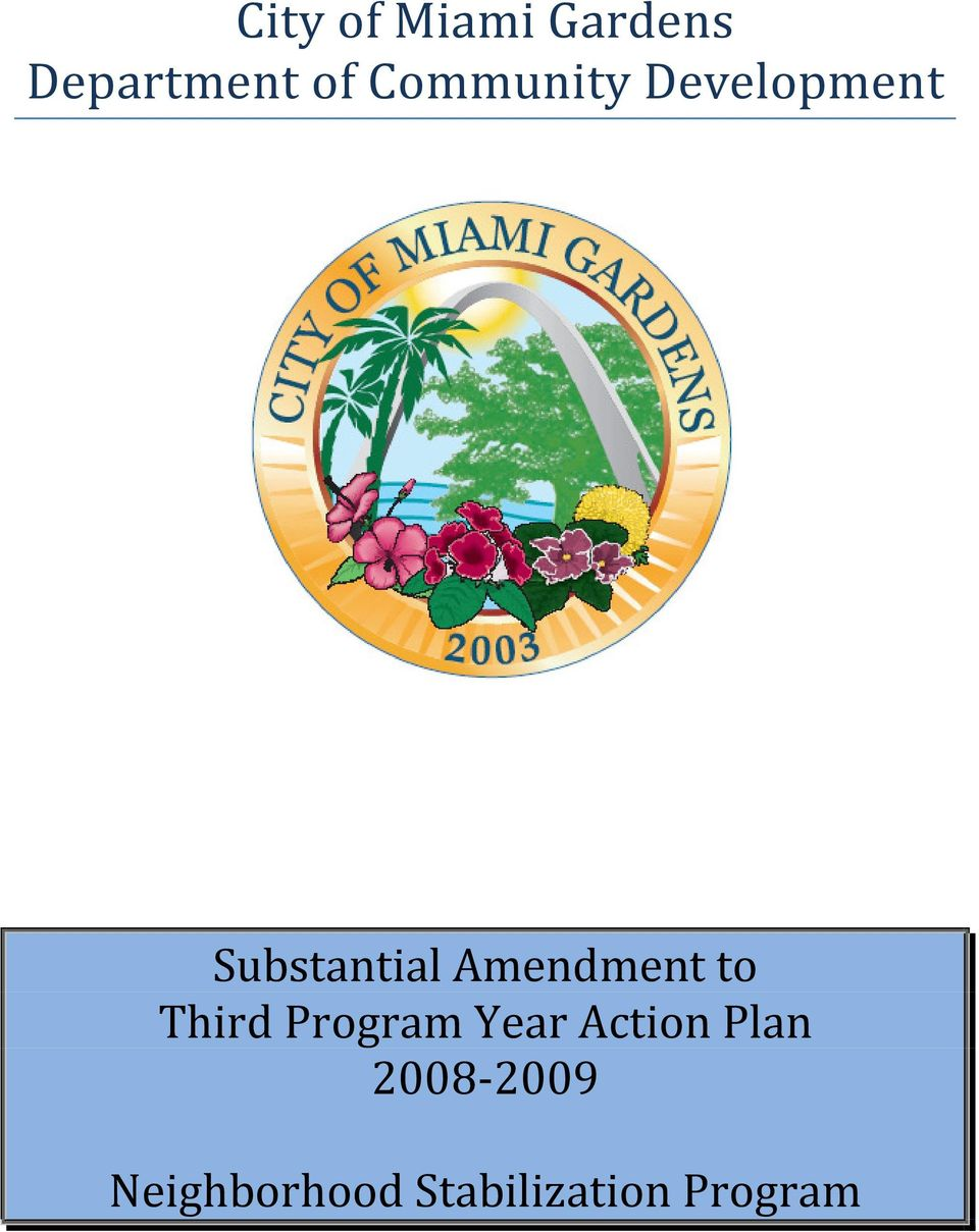 Amendment to Third Program Year Action