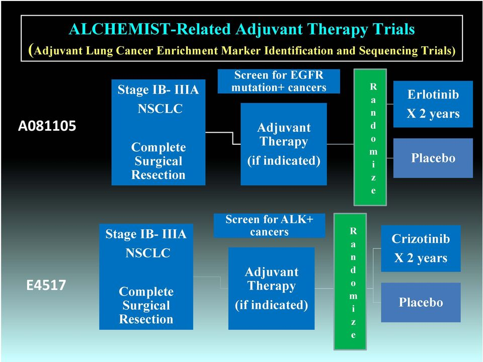 Therapy (if indicated) R a n d o m i z e Erlotinib X 2 years Placebo E4517 Stage IB- IIIA NSCLC Complete
