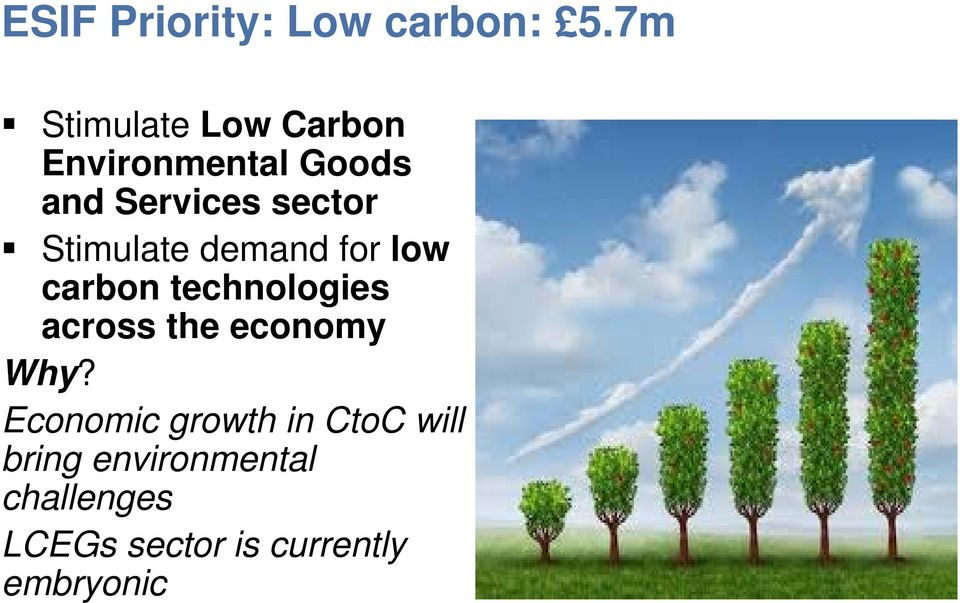 Stimulate demand for low carbon technologies across the economy