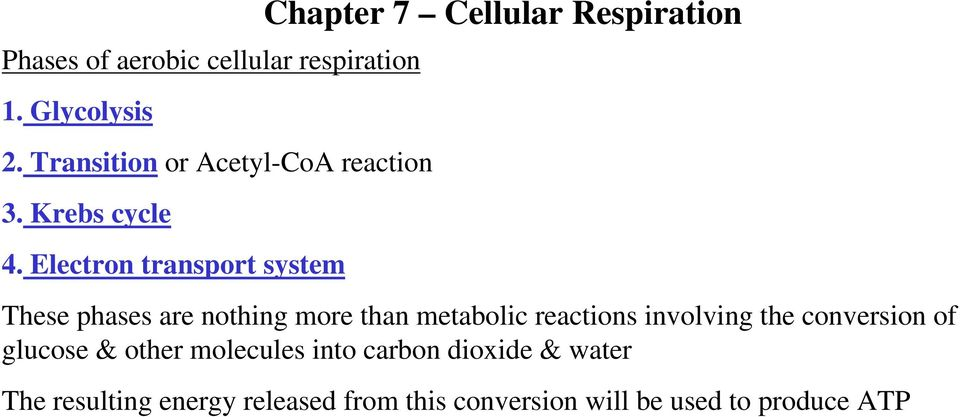 Electron transport system Chapter 7 Cellular Respiration These phases are nothing more than