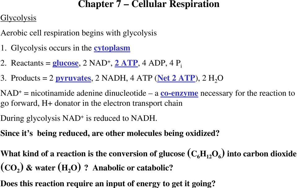 Products = 2 pyruvates, 2 NADH, 4 ATP (Net 2 ATP), 2 H 2 O NAD + = nicotinamide adenine dinucleotide a co-enzyme necessary for the reaction to go forward, H+ donator in