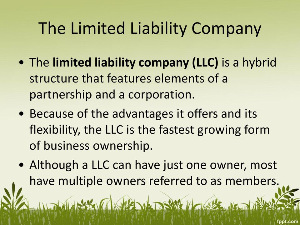 Because of the advantages it offers and its flexibility, the LLC is the fastest growing