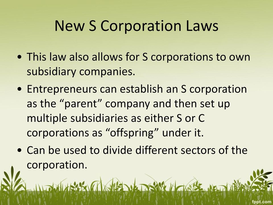Entrepreneurs can establish an S corporation as the parent company and then