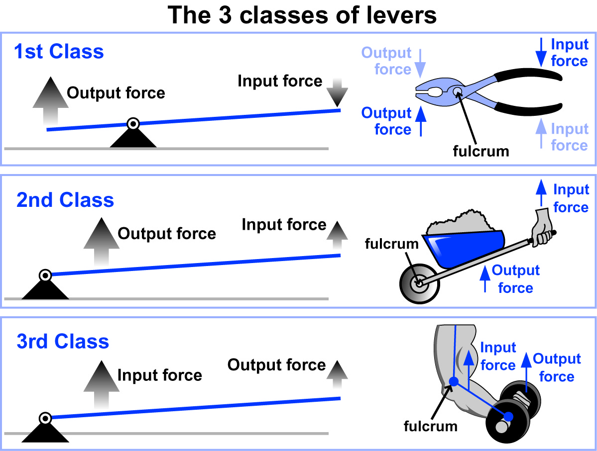 Lever Input And Output Force : Investigations for chapter how do simple machines work