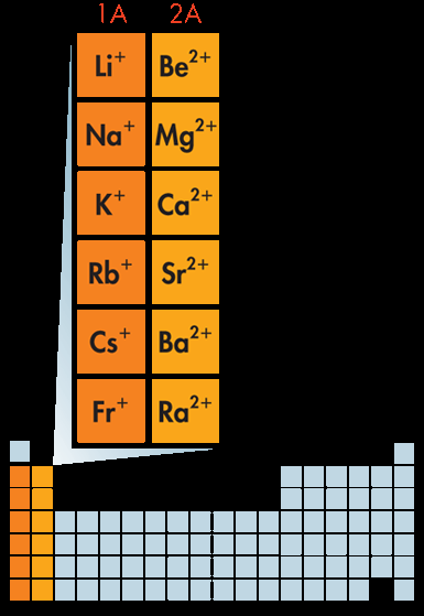 Formation of Cations The figure at right lists the symbols of the cations formed by metals in Groups 1 and 2.