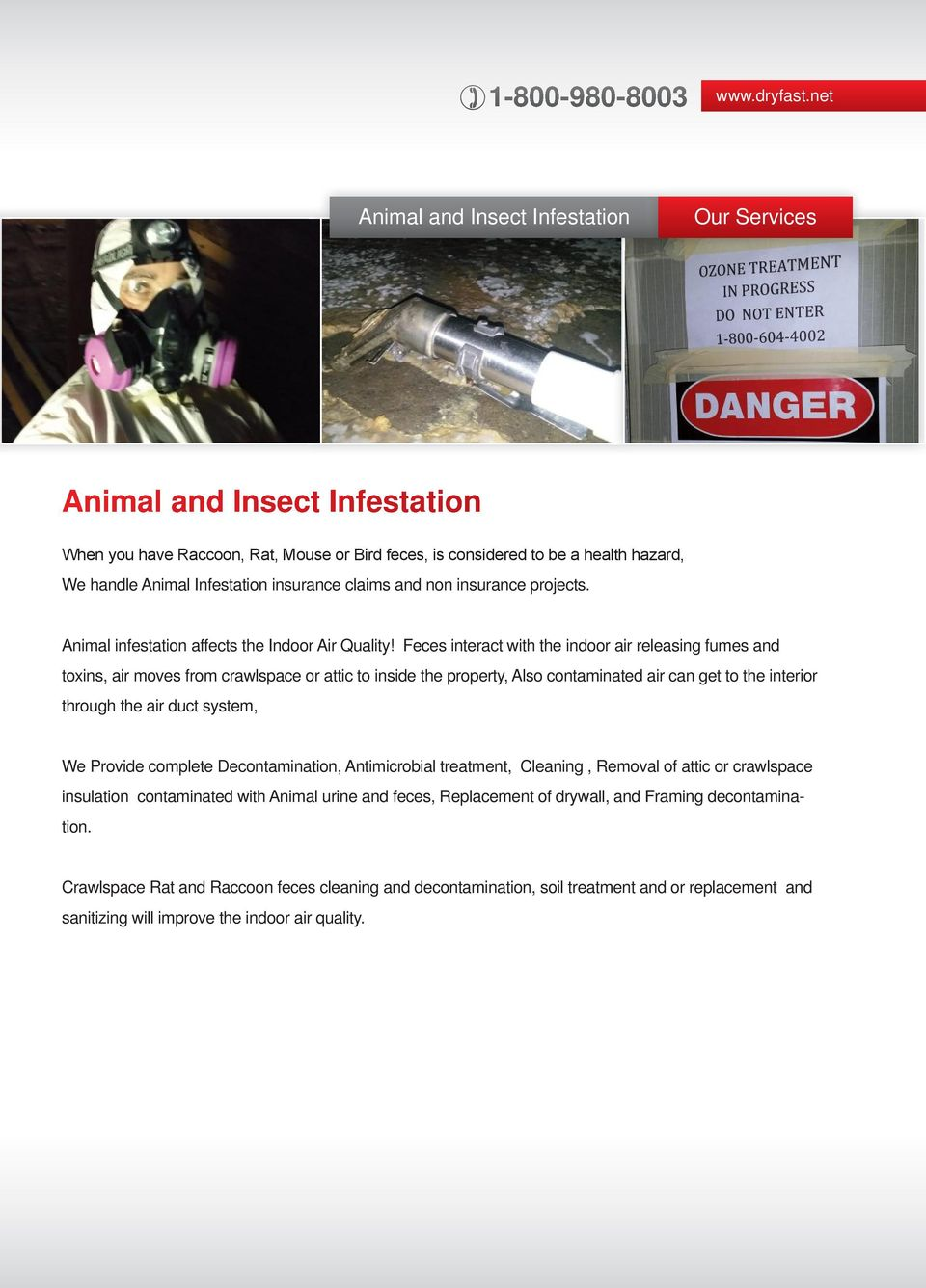 insurance claims and non insurance projects. Animal infestation affects the Indoor Air Quality!