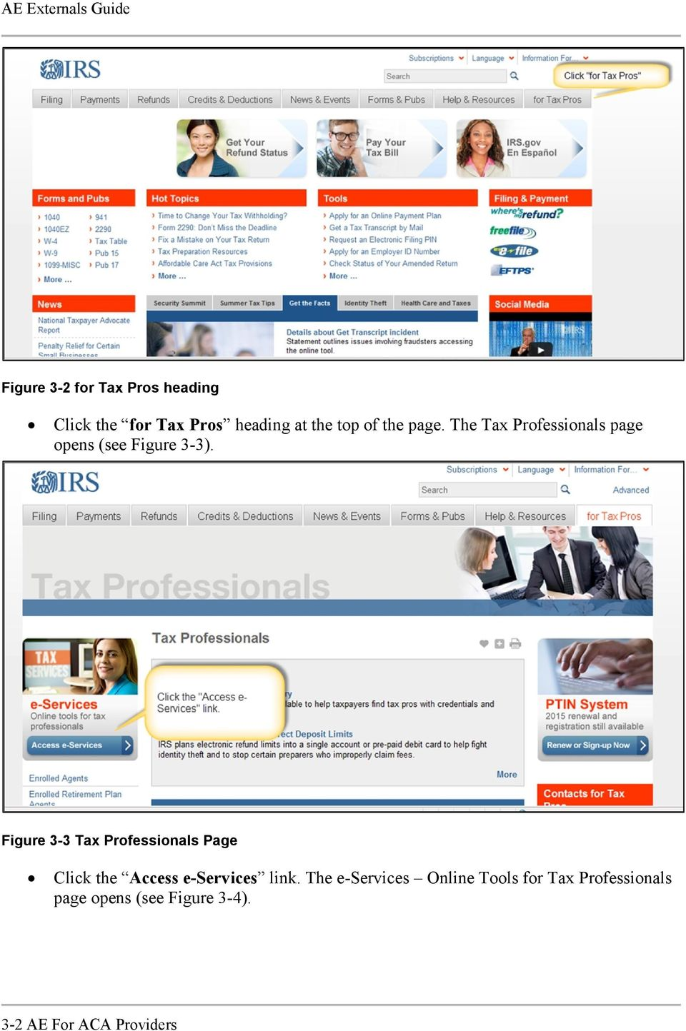 Figure 3-3 Tax Professionals Page Click the Access e-services link.