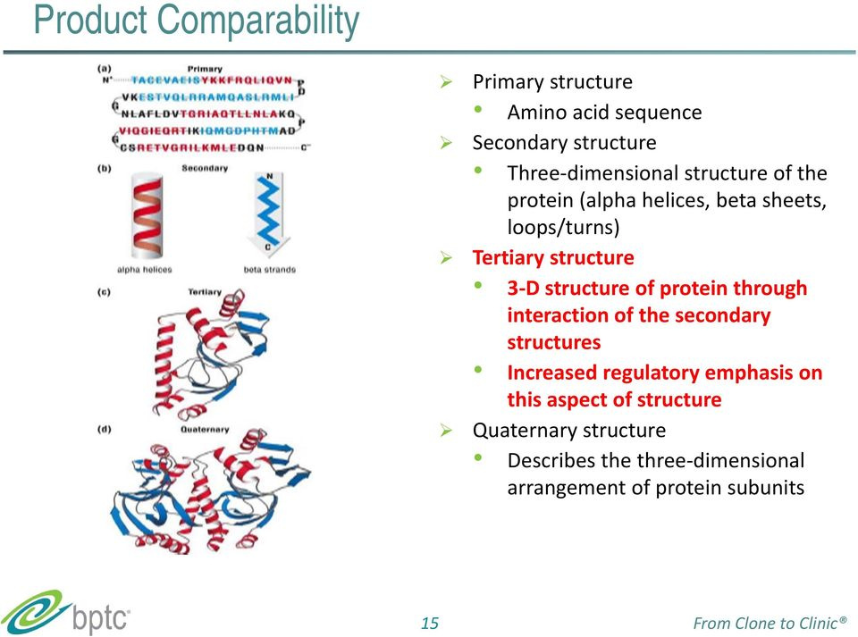 protein through interaction of the secondary structures Increased regulatory emphasis on this aspect of