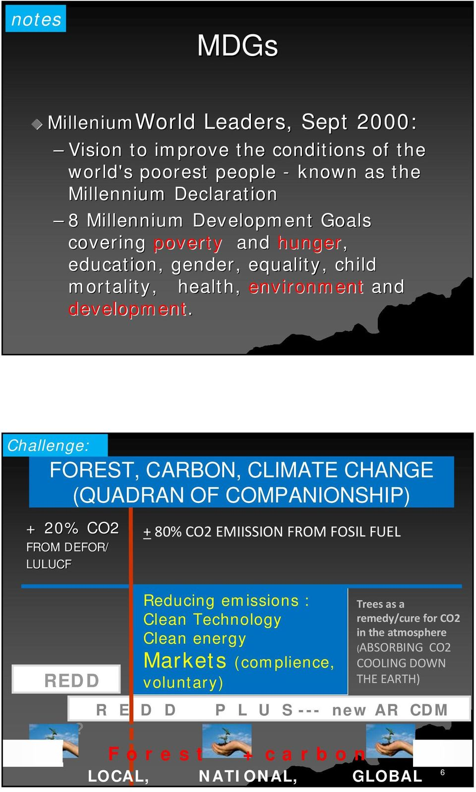 Challenge: FOREST, CARBON, CLIMATE CHANGE (QUADRAN OF COMPANIONSHIP) + 20% CO2 FROM DEFOR/ LULUCF REDD?