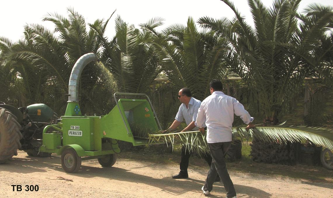 Italian machinery and equipment for date palm field operations - PDF